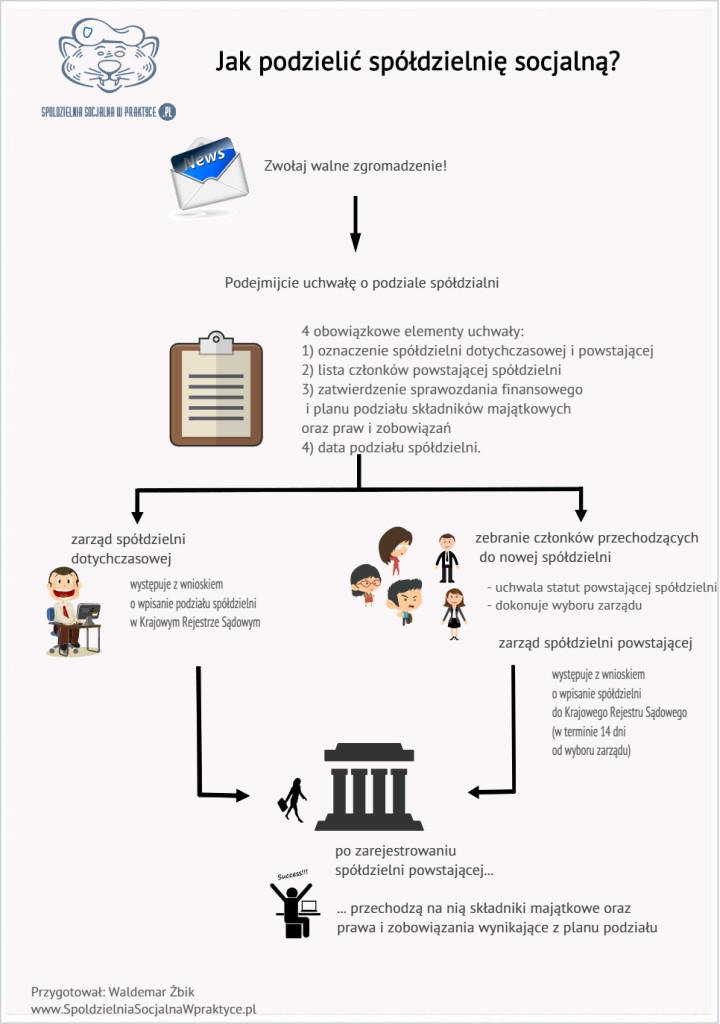Jak podzielić spółdzielnię socjalną? Infografika.