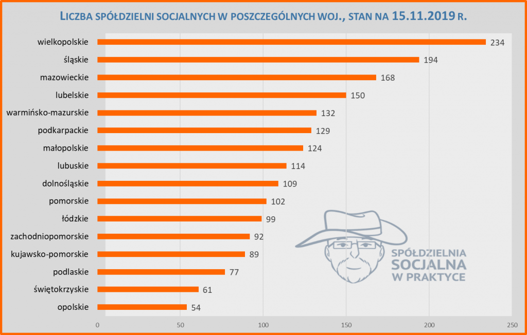 liczba spółdzielni socjalnych w poszczególnych województwach w Polsce w 2019 r.